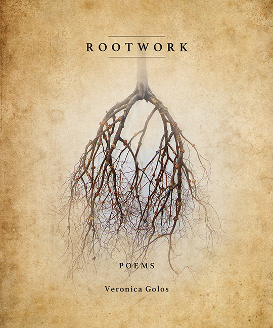 ROOTWORK Cover 72dpi